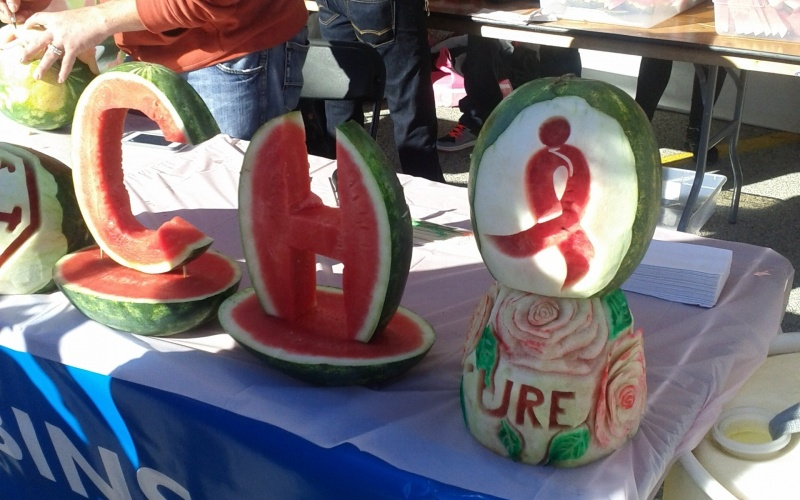 Race for the Cure Watermelon Art